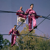 Performers doing a high wire act